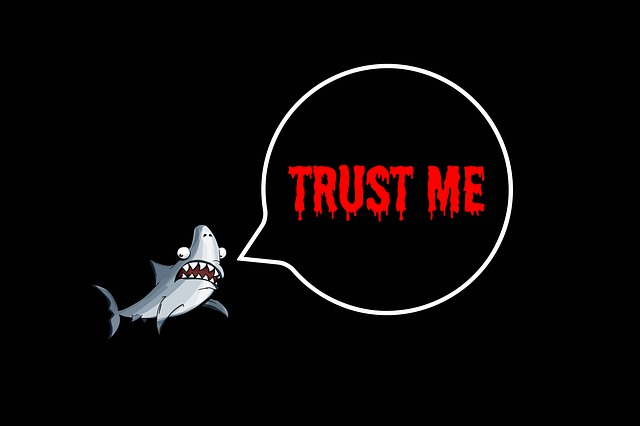 Internetový žralok