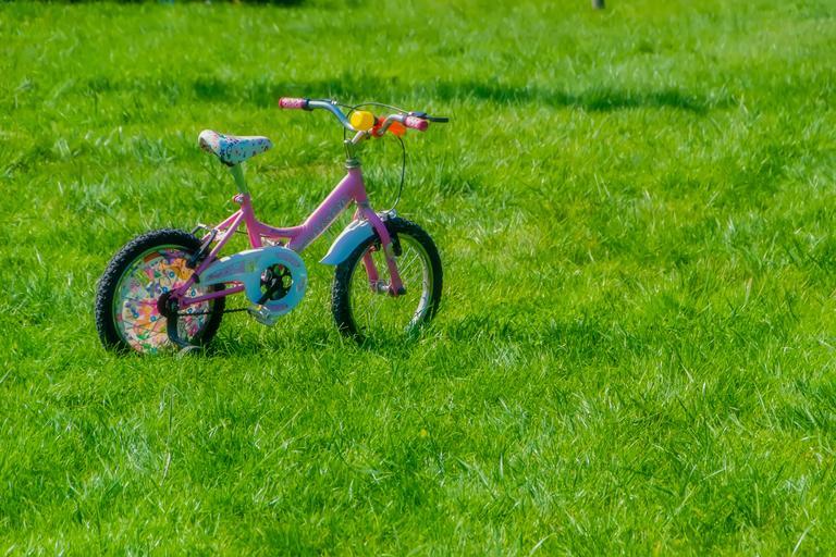 růžové kolo